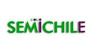 Semichile