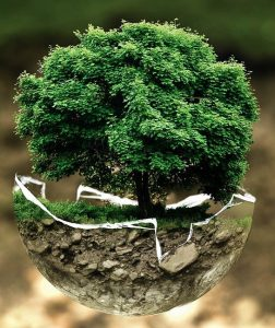 protege el medioambiente Gemapro